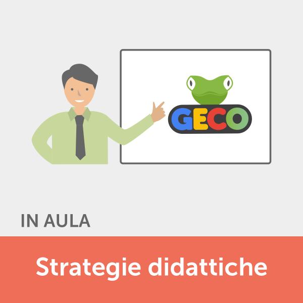 Corso in aula Strategie Didattiche - Geco