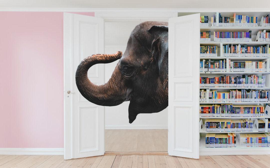 Il metodo di studio universitario: l'elefante nella stanza