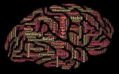 Aiutare mio figlio con Sindrome di Asperger a studiare…il racconto di un genitore.