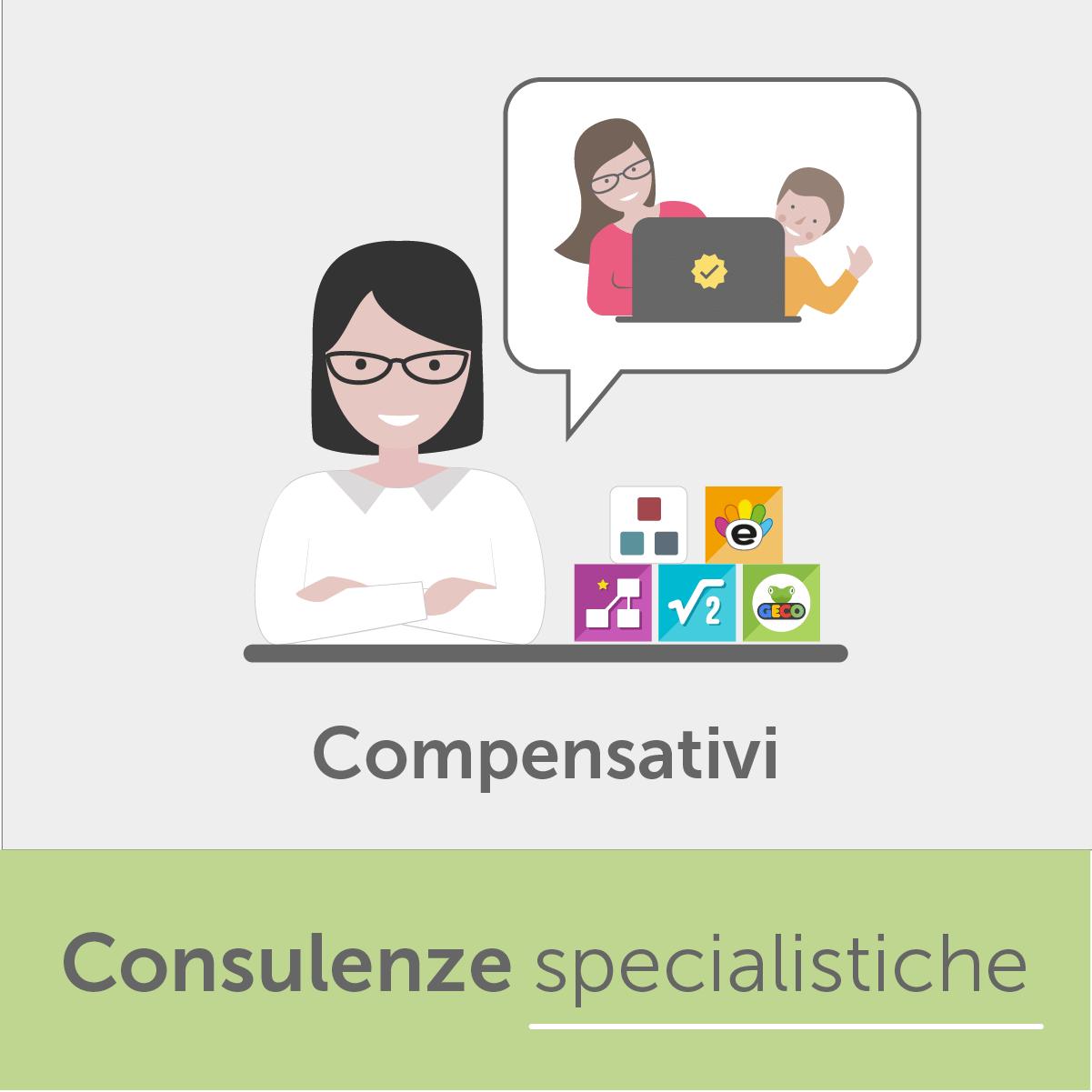 Consulenza post vendita software compensativi