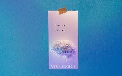 La memoria: alla scoperta di una delle funzioni cognitive più complesse e delle strategie per usarla bene